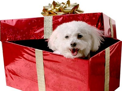 regalos-reyes.jpg